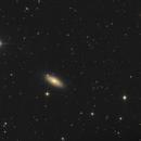 NGC 2841,                                echosud