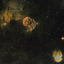 IC443 Region in SHO,                                Frank Zoltowski