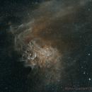 IC 405 The Flaming Star Nebula in Ha/SII Bi-Colour,                                Chris