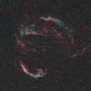 Cygnus Loop widefield - SHO,                                Axel