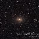 Galaxia NGC6744,                                Héctor Henríquez Leighton