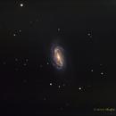 NGC 2903 Barred Spiral Galaxy,                                NewLightObservatory
