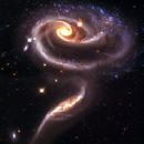 Arp -273: Galactic Rose,                                Satwant Kumar