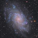 M33 in LRGB,                                Scott