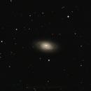 M64 - The Black Eye Galaxy,                                Tim Jardine