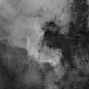 NGC7000 North America Nebula,                                S. DAVID