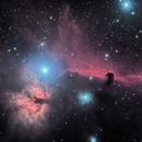 Horsehead and Flame Nebula,                                starfield
