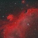 Seagull Nebula (Narrowband HOO Palette),                                Diego Cartes