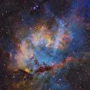 LBN471 The Lion Nebula,                                Peter Shah