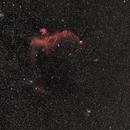 Seagull nebula,                                Frigeri Massimiliano