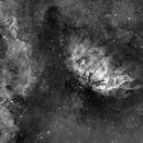 The Tulip Nebula Sh2-101,                                Michele Vonci