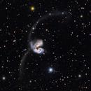 NGC 4038,                                Roger Gifkins