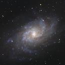 Triangulum Galaxy (M33),                                Parker Kennedy
