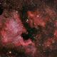 North America Nebula,                                Shane Jones