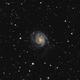 M101 Pinwheel Galaxy,                                Richard Cole