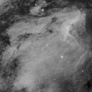 IC5070 Pelican Nebula,                                Brandon Liew