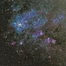 NGC 2070 (Caldwell 103) Tarantula Nebula,                                Didier FOURNIL