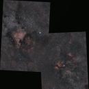 Alpha to Gamma Cyg Mosaic,                                David McClain