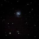 M61,                                Armel FAUVEAU