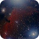 Hersehend Nebula IC 434 & NGC2023,                                Francois Tasse
