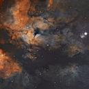 Mosaic IC1318 (Sadr Region),                                Valery Sytkin