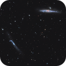 NGC 4656 and NGC 4631,                                Jens Zippel