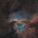 Fighting Dragons of Ara NGC 6188,                                Nick Axaris