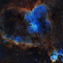 heart nebula,                                davidshaw