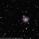 NGC2500,                                Wulf