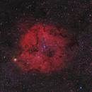 IC 1396 (Ha + RGB),                                Scott Davis