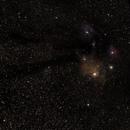 Rho Ophiuchi 6-6-21,                                jratino