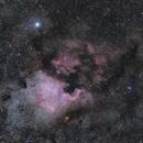 NGC7000 - North America Nebula,                                Darius Kopriva