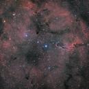 IC1396,                                LeCarl99