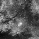 IC1318 & NGC 6910 en Ha,                                Dieter333