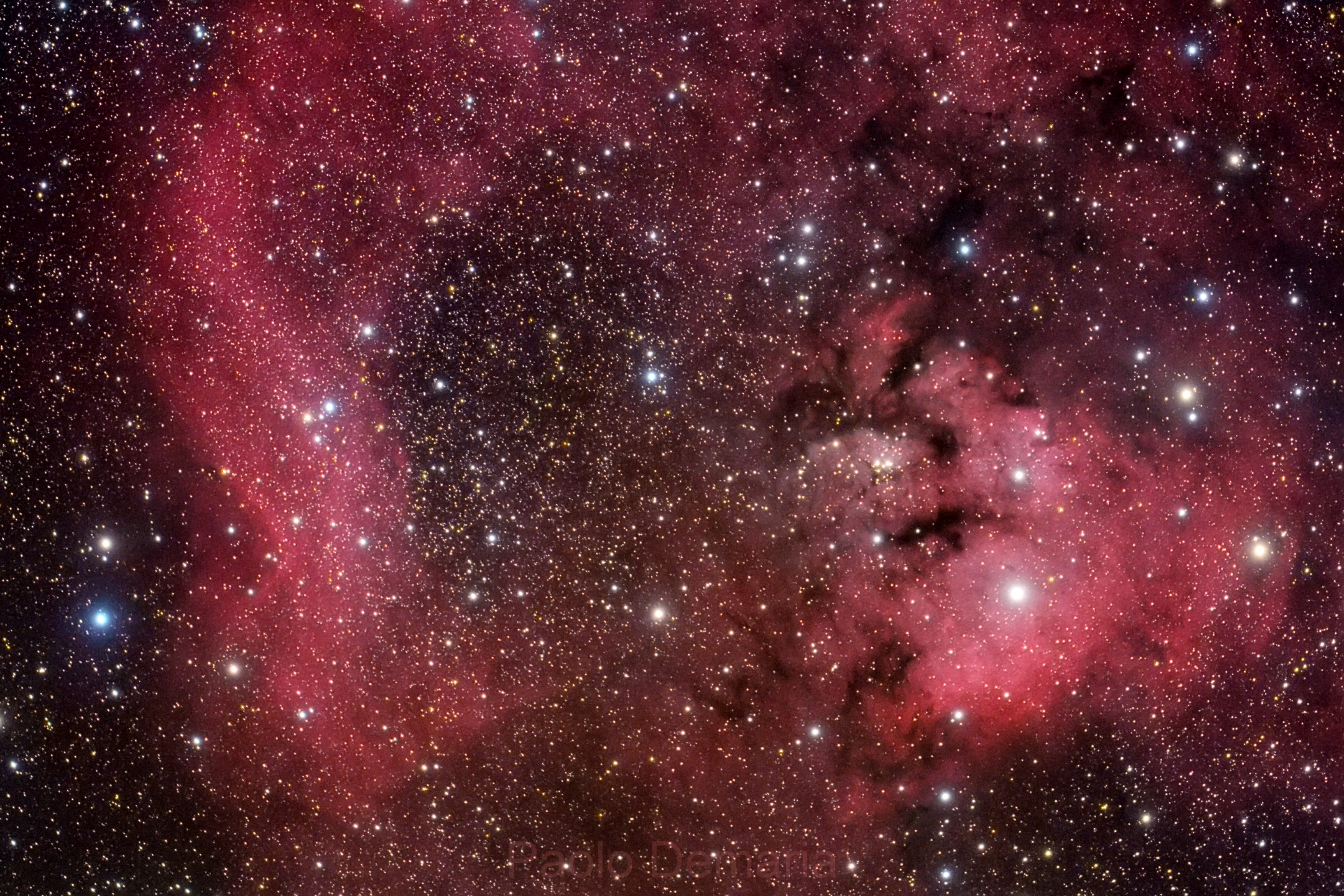 NGC 7822,                                Paolo Demaria