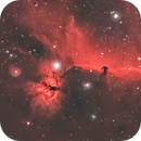 Horsehead Nebula WideField,                                Nico Augustin