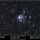 NGC 7129,                                Florian Signoret