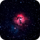 Trifid Nebula,                                Justin Daniel