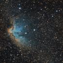 NGC7380, Wizard Nebula,                                Michael Feldberg