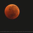 The Moon - Eclipse - Totality,                                Roberto Coleschi