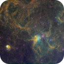IC 417 Spider and Fly SHO+RGB,                                Randy Lindstrom