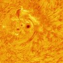 Sunspot 14 Sep 2014,                                Marcello B