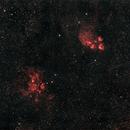 NGC 6357, aka the War and Peace Nebula and NGC 6334, aka Cat's Paw Nebula.,                                Mark Sansom