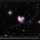NGC 4038 & 4039, Antennae Galaxies, OSC (UHC-S), 5-6 Apr 2016,                                David Dearden