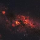 Cygnus constellation,                                Artūras Medvedevas