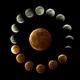 2019 Lunar Eclipse,                                Jim Tallman