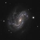 NGC 4051,                                Gary Imm