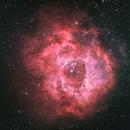 La nébuleuse de la Rosette, Caldwell 49, NGC2237 rosetta nebula RASA8,                                Victor