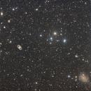 Fornax Galaxy Cluster,                                lizarranet