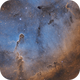 IC 1396 - Wide field,                                Samuli Vuorinen